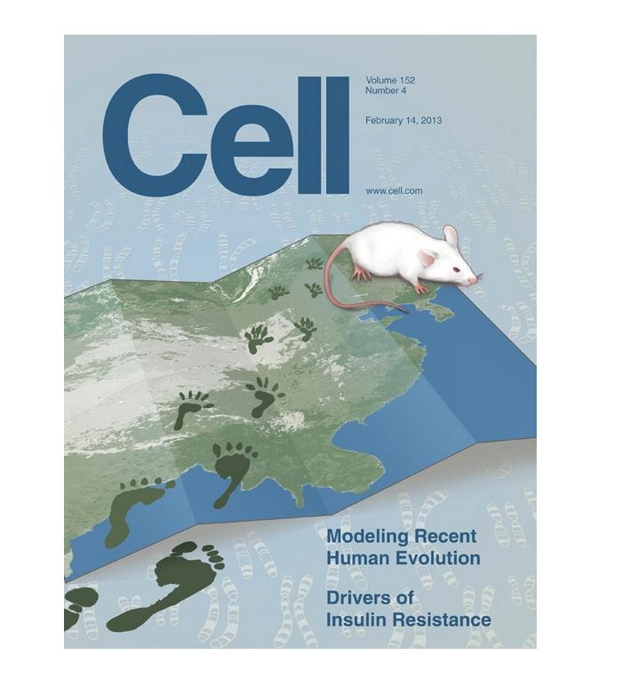 Modeling Recent Human Evolution. Cover