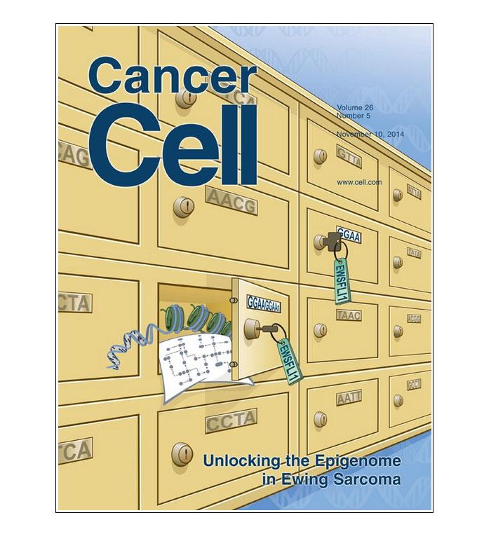 Unlocking the Epigenome in Ewing Sarcoma