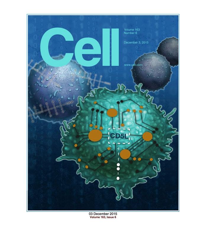 Critical regulators of Th17 cell pathogenicity